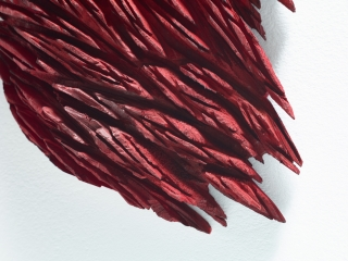 ragged_red_1_detail_1
